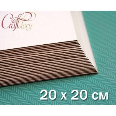 Пивной картон 20x20 см