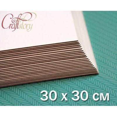 Пивной картон 30 x 30 см