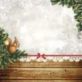 Бумага для скрапбукинга Новогодний лес. Белочка 30,5 х 30,5