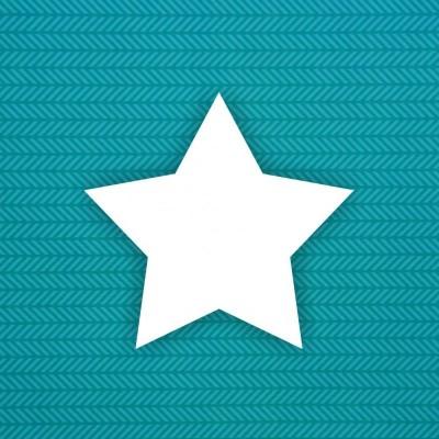 Заготовка альбома Звезда (острая) — 6шт