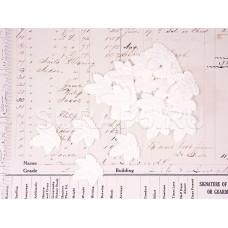Листья кленовые, белые (20 шт)