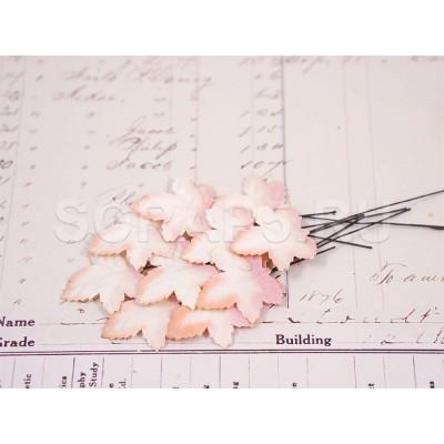 Листья клена, белые с персиковым (10 шт)