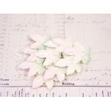 Листья клена, зелено-розовые (10 шт)