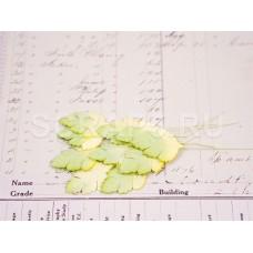 Листья клена, желто-зеленые (10 шт)