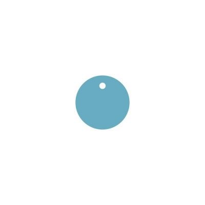 Тег круг (пластик) 6см 5шт
