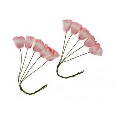 Тюльпаны бело-розовые, 10 шт