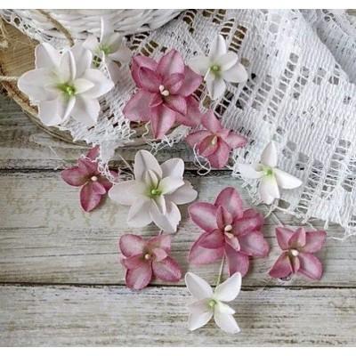 Набор цветов Гортензии Дуболистные,розово-бордовые