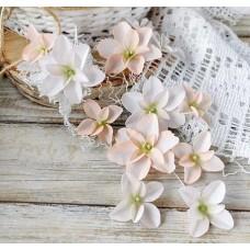 Набор цветов Гортензии Дуболистные, пудрово-персиковые