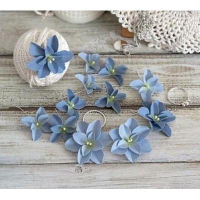 Набор цветов Гортензии Дуболистные, сине-голубые